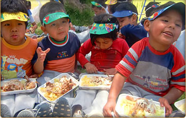 Peru Social Volunteer Projects